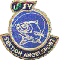 angelsport logo